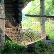 Hammock hanging on two birch trees — Stock fotografie