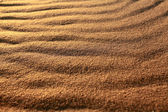 Desert sand texture background — Stock Photo