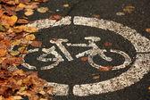 Asphalt bicycle city — Photo