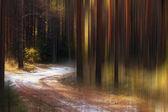 Blurred autumn landscape — Stock Photo