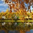 Pond in autumn — Stock Photo