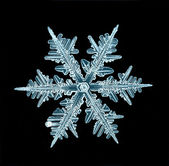 Snowflake isolated natural crystal — Stock Photo