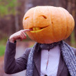 Halloween girl with pumpkin head — Stock Photo #36319263