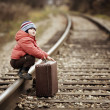 Boy sitting in a suitcase near the railway journey — Stock Photo #36319681