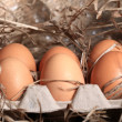 Stock Photo: Chicken eggs