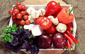 Vegetables on tray — Stockfoto