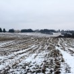 Winter — Stock Photo #41200021