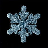 Snowflake ice crystals — Stock Photo