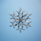 Snowflake ice crystals — Stock Photo