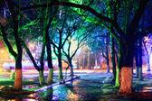 夜晚的城市公园 — 图库照片