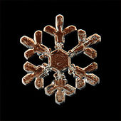 Snowflake ice crystals — Stockfoto
