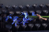 Flowers on a typewriter — Foto Stock