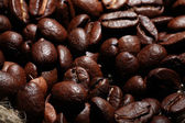 Arabica coffee beans texture — Stock Photo