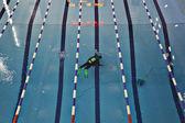 Diver in pool — Foto Stock