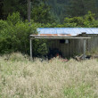 New Zealand shed — Stock Photo #24610707
