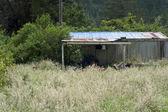 New Zealand shed — Stock Photo