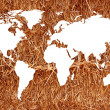 World map white background — Stock Photo