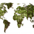 Destruction of the forests in the world — Stockfoto