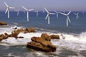Offshore wind — Стоковое фото