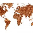 World map — Stock Photo #22859938