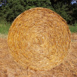 Stack of straw — Stock Photo #30181833