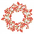 Red orange rowan berry mountain ash berries beautiful delicate autumn season decoration wreath on white background — Stock Vector