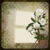 Frame with a branch of roses on a vintage background — Stock Photo