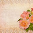 Greeting card with roses and lace — Stock Photo #33221469