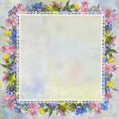 Border of flowers, lace on a beautiful gentle background — Stock Photo