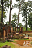 Trees in ancient temple in Angkor Wat — 图库照片