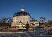 Baltimore Botanical Conservatory — Stock Photo