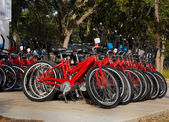 Bikes Rentals — Stock Photo