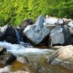 Rushing Woodland Stream — Stock Photo #47515577
