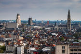 Aerial view of Antwerp — Stock Photo