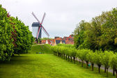 Wind mill in Bruges — Stock Photo
