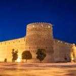 Karim Khan citadel — Stock Photo #44231667
