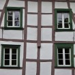 Detail of typical half timbered house — Stock Photo #44234347