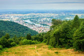 Aerial view of Heidelberg — Stock Photo
