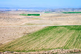 Countryside view near Shiraz — Stock Photo