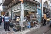Vista de la tienda de pollo y gallina — Foto de Stock