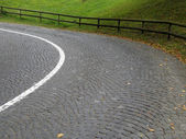 Winding cobbled road — Stock Photo