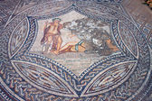 Deatil of mosaic in Ancient town Volubilis — Stock Photo