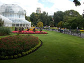 Belfast Botanic Garden  — Stock Photo