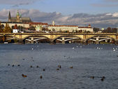 Scenic view of the Prague Castle — Stock Photo