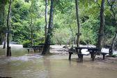 Picnic place at a Tat Kuang Si waterfall — Stock Photo