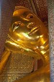 Dev Buda uzanmış görüntüsünü — Stok fotoğraf