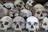 Stacked human skull — Stock Photo