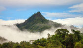 Mountain in clouds — Stock Photo