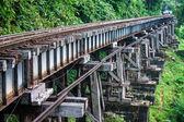 缅甸铁路的视图 — 图库照片
