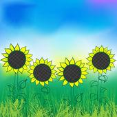 Watercolor sunflower — Stock Vector